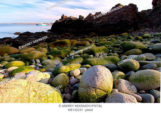 Coastal landscape, Barents Sea, Russia, Arctic