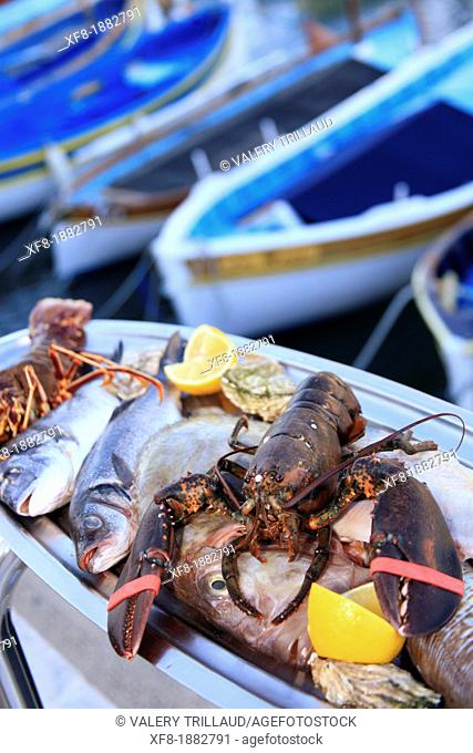 Sea food, Nice, Alpes-Maritimes, 06, French Riviera, Cote d'Azur, PACA, France