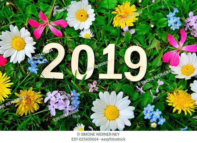 2019 years silvester new year buschstaben on colorful flower meadow