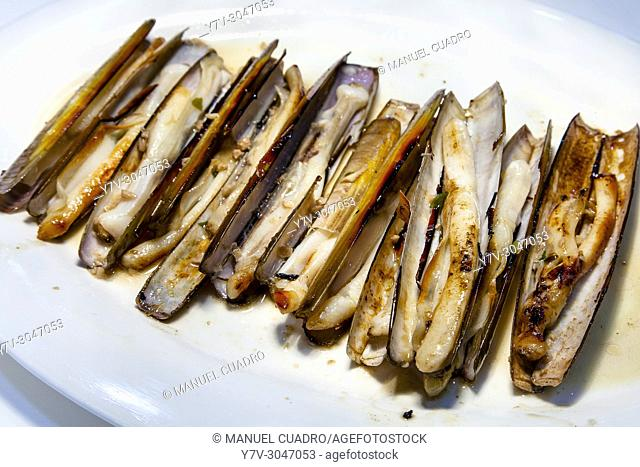 Plato de Navajas a la plancha / Grilled razor clams. Basque Country, Spain