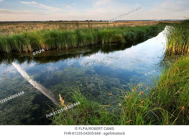 Vapour trail reflected in flooded ditch on coastal grazing marsh habitat, Elmley Marshes N.N.R., Isle of Sheppey, Kent, England, August