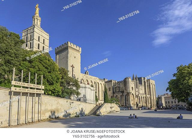 Avignon, Vaucluse, Provence, France