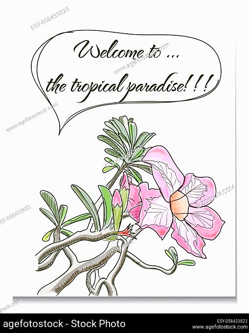 Vector card with tropical flower. EPS10 illustration