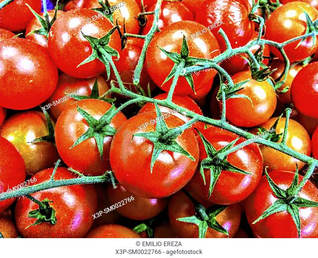 Cherry tomatoes for sale