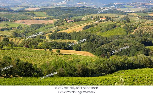 Near San Gimignano, Siena Province, Tuscany, Italy. Typical rolling countryside with vineyards and farmhouses