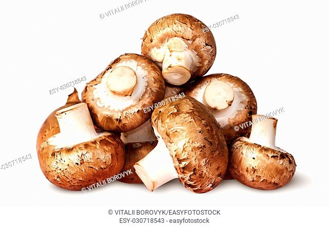 Pile of fresh brown champignon isolated on white background
