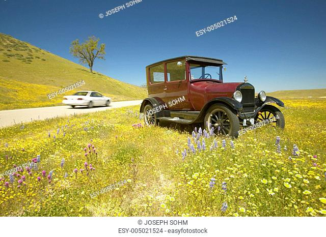 A modern car driving by a maroon Model T parked alongside a scenic road surrounded by spring flowers, Route 58, Shell Road, CA
