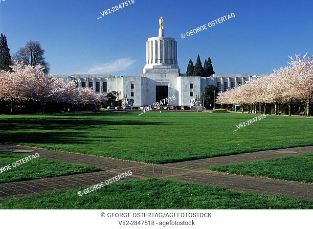 State capitol with cherry trees in bloom, State Capitol State Park, Salem, Oregon
