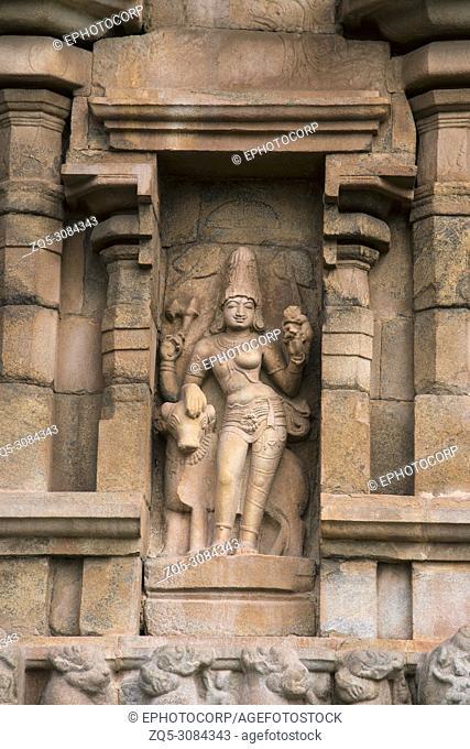 Sculpture of Ardhanari Shiva as half man and half woman, Gangaikonda Cholapuram, Tamil Nadu, India