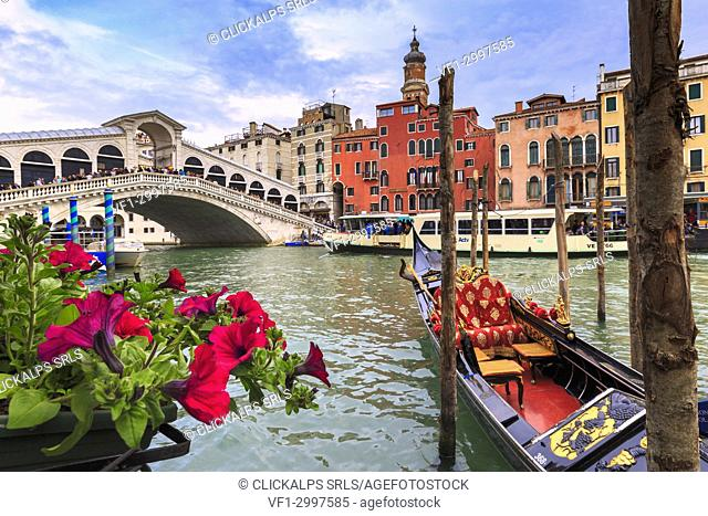 Flowers overlooking the Grand Canal with gondolas and the Rialto Bridge in the background, Venice, Veneto, Italy