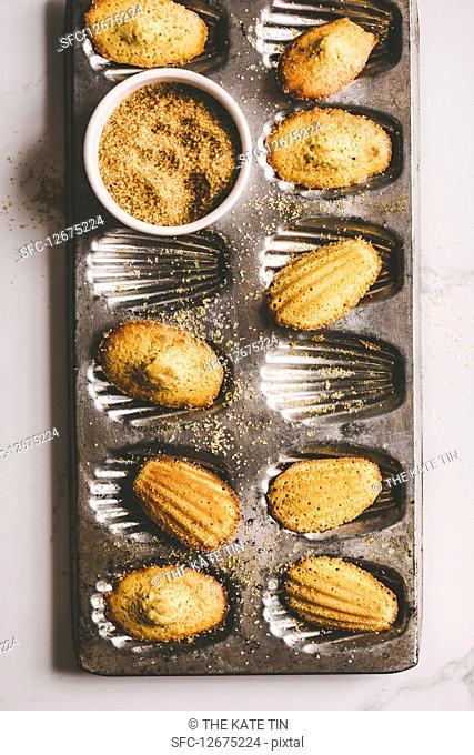 Madeleines with demerara sugar