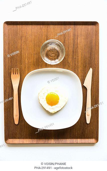 Cholesterol concept