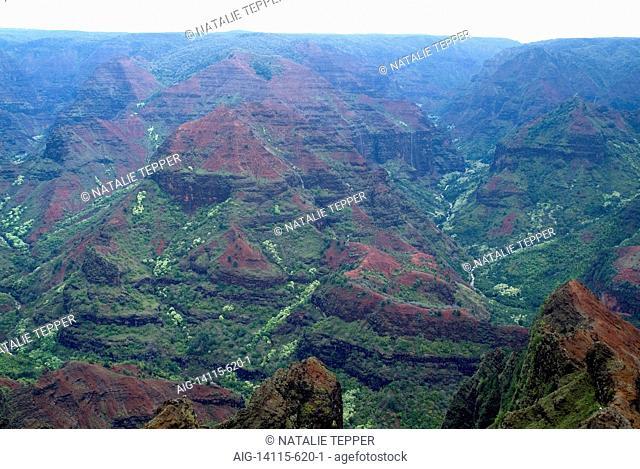 Waimea Canyon, known as the Grand Canyon of the Pacific, island of Kauai, Hawaii, USA