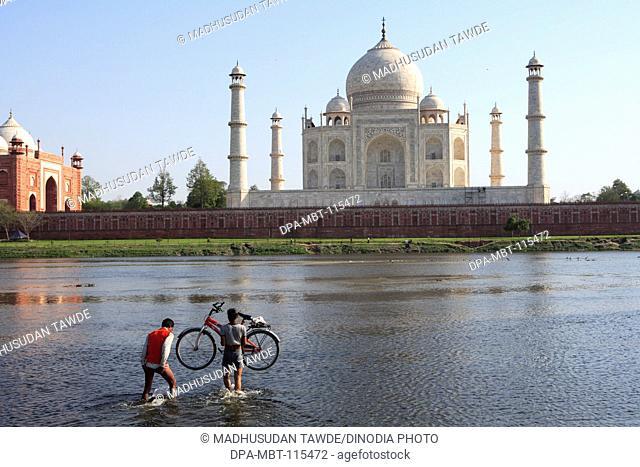 Man carrying bicycle in Yamuna River Taj Mahal Seventh Wonders of World , Agra , Uttar Pradesh , India UNESCO World Heritage Site
