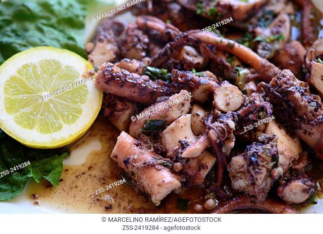 Mediterranean cuisine. Octopus. Island of Gozo. Malta