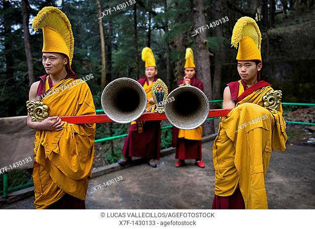 Ritual, in Namgyal Monastery,in Tsuglagkhang complex  McLeod Ganj, Dharamsala, Himachal Pradesh state, India, Asia