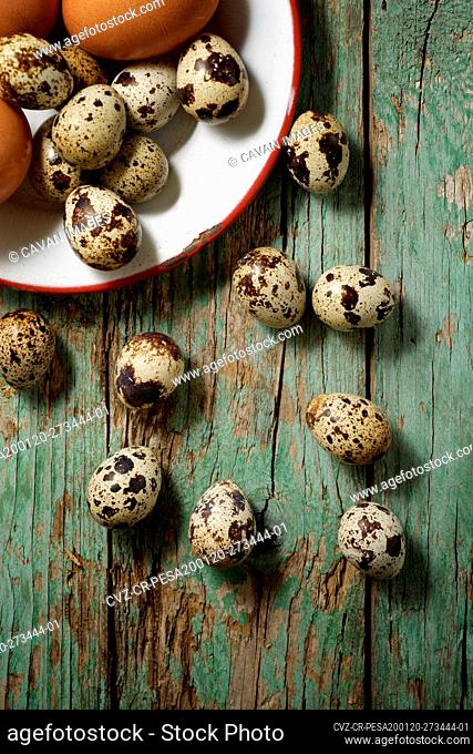 Quail and chicken eggs on a wooden table