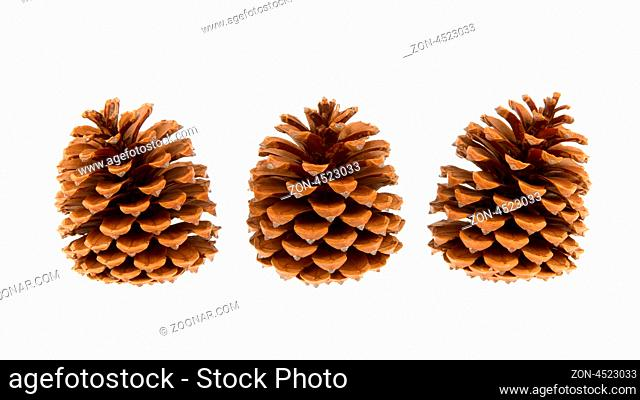 Three pine cones isolated on a white background