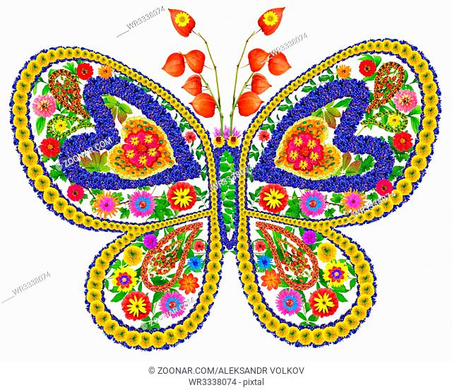 Butterfly in love abstract collage made from fresh summer flowers. Isolated