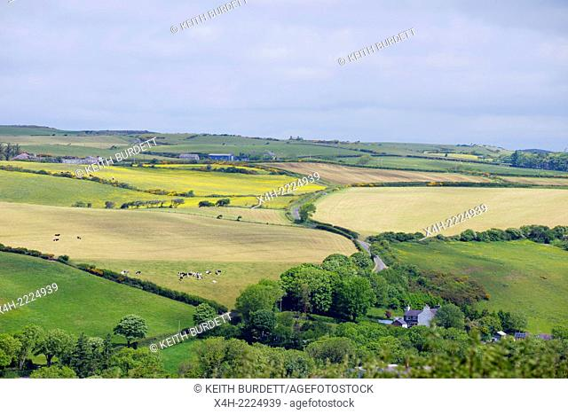 Agricultural landscape in West Wales, UK. Grassland for grazing and hay or silage production