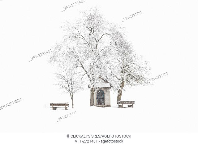 Europe, Italy, Trentino Alto Adige. The Madonna brusada chapel in prairies of Non valley in a winter day