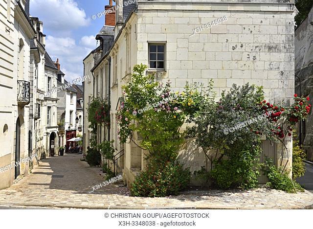 Rue du Chateau (Chateau Street), Loches in Touraine, department of Indre-et-Loire, Centre-Val de Loire region, France, Europe