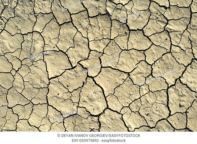 Cracked soil texture. Hard shadows and sun. Dried ground. Pattern of many cracks for background
