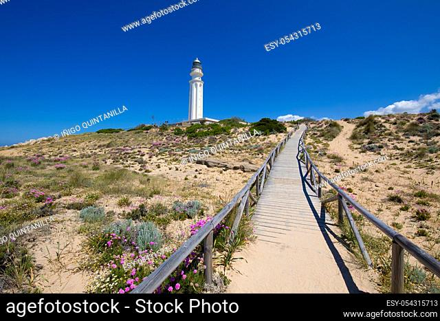 wooden footpath in nature to the lighthouse of Cape Trafalgar, in Canos Meca village (Barbate, Cadiz, Andalusia, Spain), blue sky