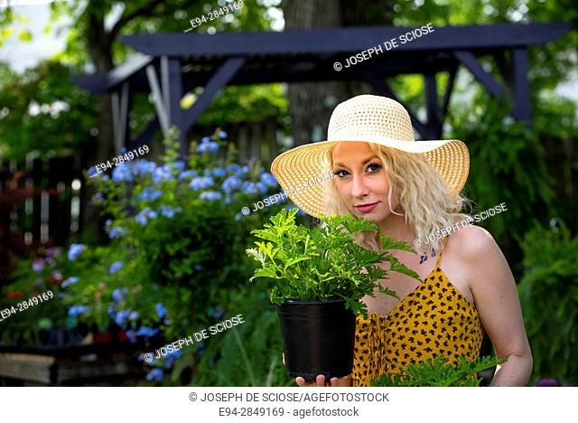 A pretty 30 year old blond woman shopping in a plant nursery holding a fragrant geranium
