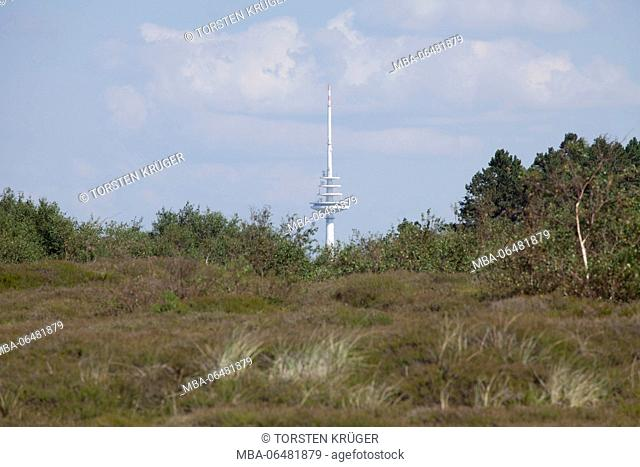 Duhner moor, Cuxhaven-Duhnen, North Sea spa Cuxhaven, Lower Saxony, Germany, Europe