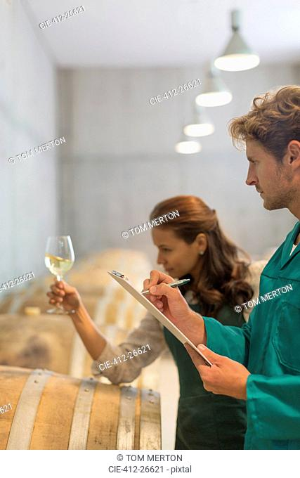 Vintners examining white wine in winery cellar