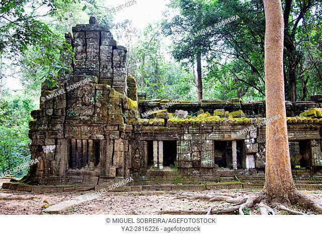 Ta Prohm Temple at Siem Reap, Cambodia