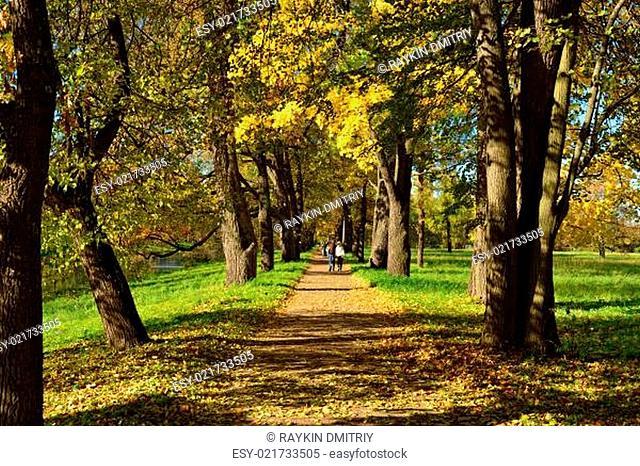 Autumn sunny landscape with  in Pushkin garden