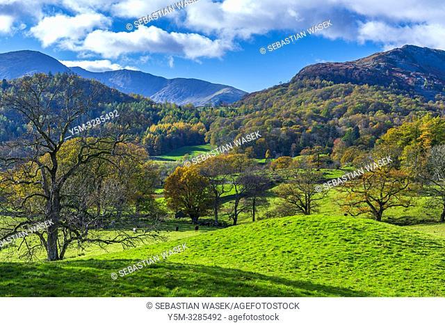 Cumbrian landscape near Elterwater, Lake District National Park, Cumbria, England, UK, Europe