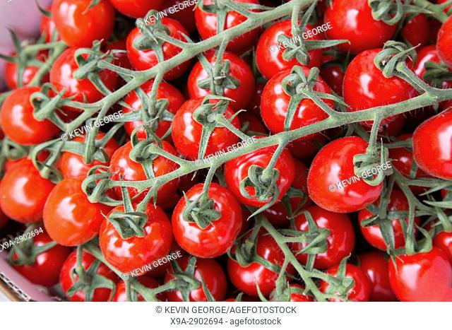 Cherry Tomato Background on Market Stall