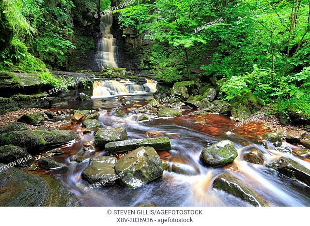 Mill Gill Force, Askrigg, Wensleydale, Yorkshire Dales, England, UK