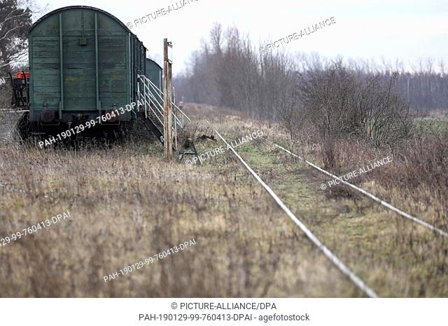 28 January 2019, Mecklenburg-Western Pomerania, Bresewitz: The tracks of the former Darßbahn between Barth and Prerow are partly overgrown at the station...