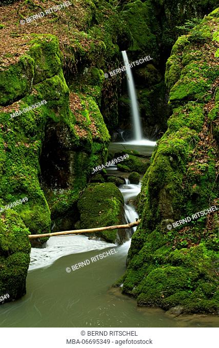 Haselbach waterfall, Black Forest, Baden-Wuerttemberg, Germany
