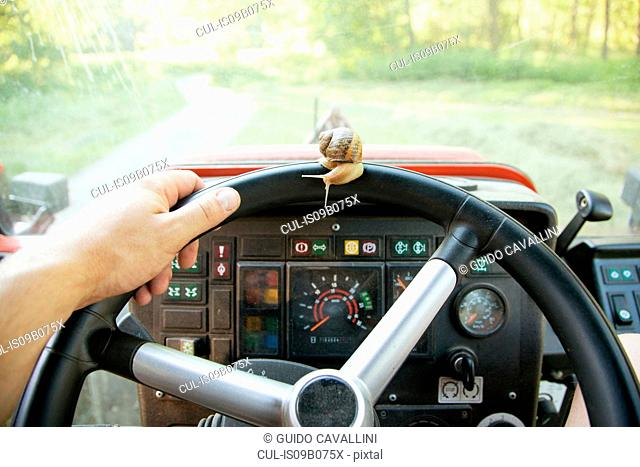 Snail on tractor steering wheel, Vogogna,Verbania, Piemonte, Italy