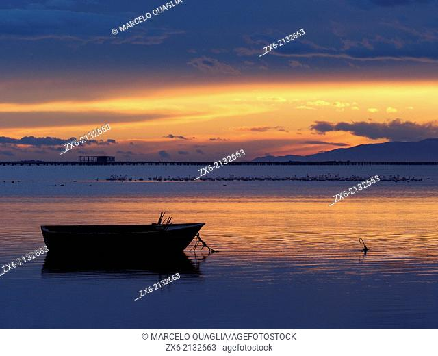 Winter sunset at Alfacs Bay with group of flamingoes. Ebro River Delta Natural Park, Tarragona province, Catalonia, Spain