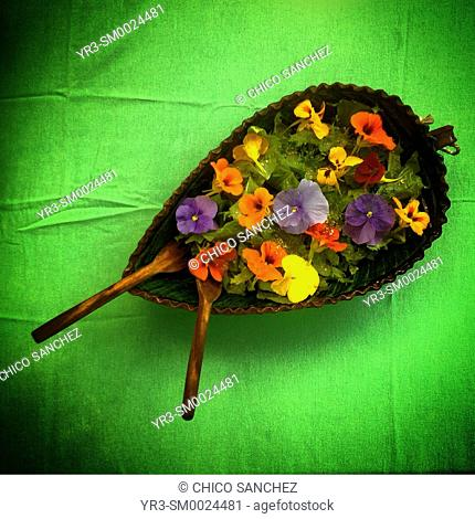 A salad with flowers in a green table in Banco de Semillas Tepetixtla seeds bank in Mexico State, Mexico
