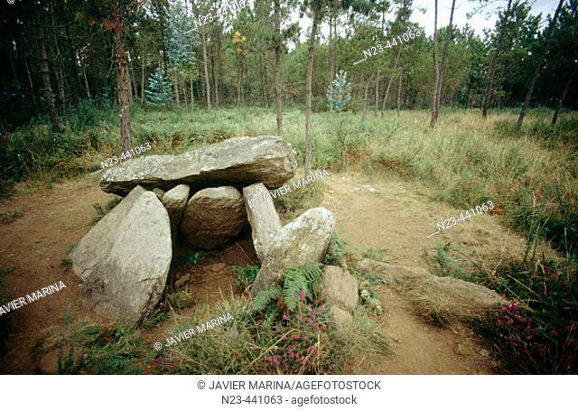 Pedra da Arca dolmen. Malpica. La Coruña province. Spain