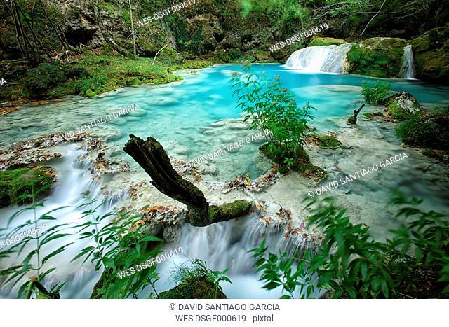 Spain, Urbasa y Andia Natural Park, Urederra river flowing between trees