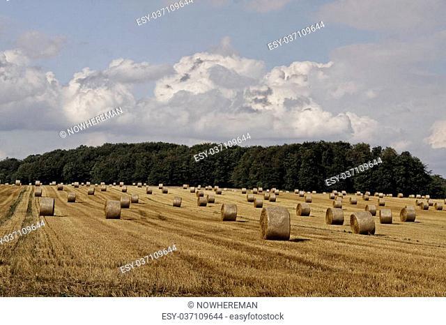 Round baler, straw bale in Lower Saxony, Germany, Europe