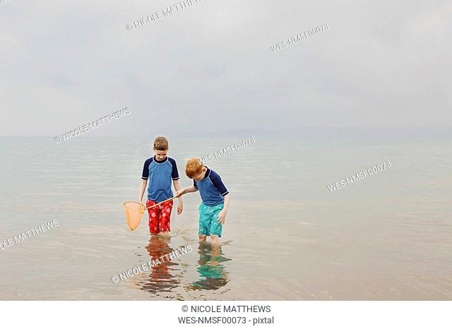 Two boys with dip net in the sea