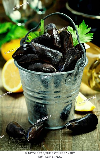 Fresh mussels ready for cooking on wooden background