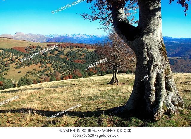 Landscape in the Sierra de Abodi. Ochagavía. Salazar valley. Navarra