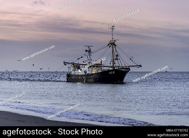 Fishing trawler fishing in the North Sea in the evening