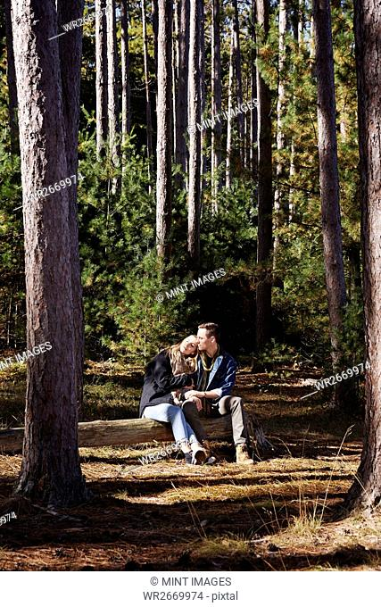 A couple seated on log in a pine forest
