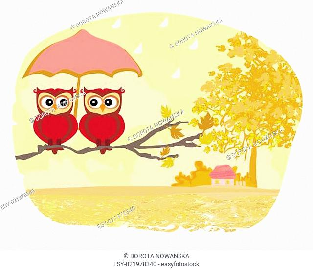 Owls couple under umbrella, autumn rainy day